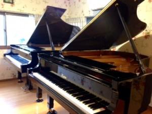 ボストングランドピアノGP-193 PE