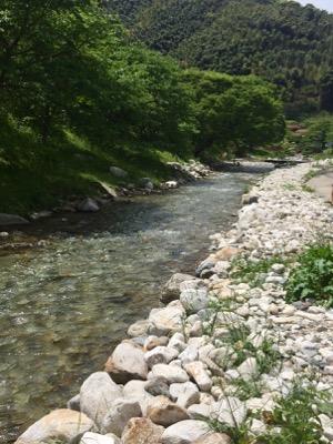 三瀬峠近くを流れる清流